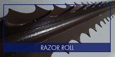 Razor Roll image on front page | Magnador
